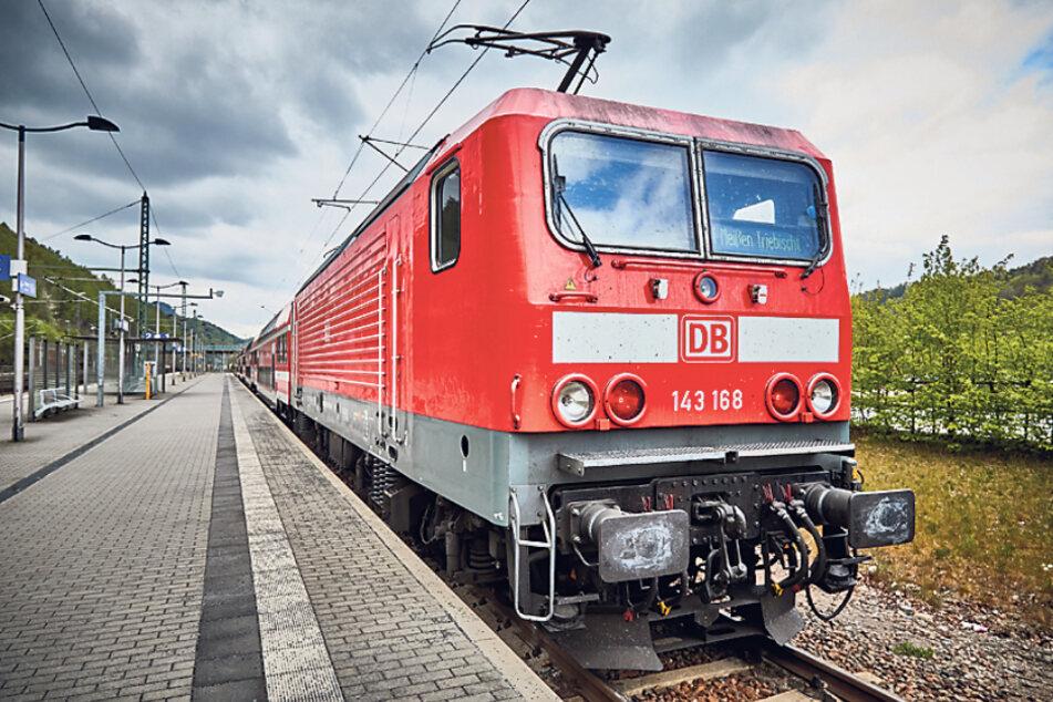Dresden: Ab Montag: DVB und VVO nehmen wieder Fahrt auf!