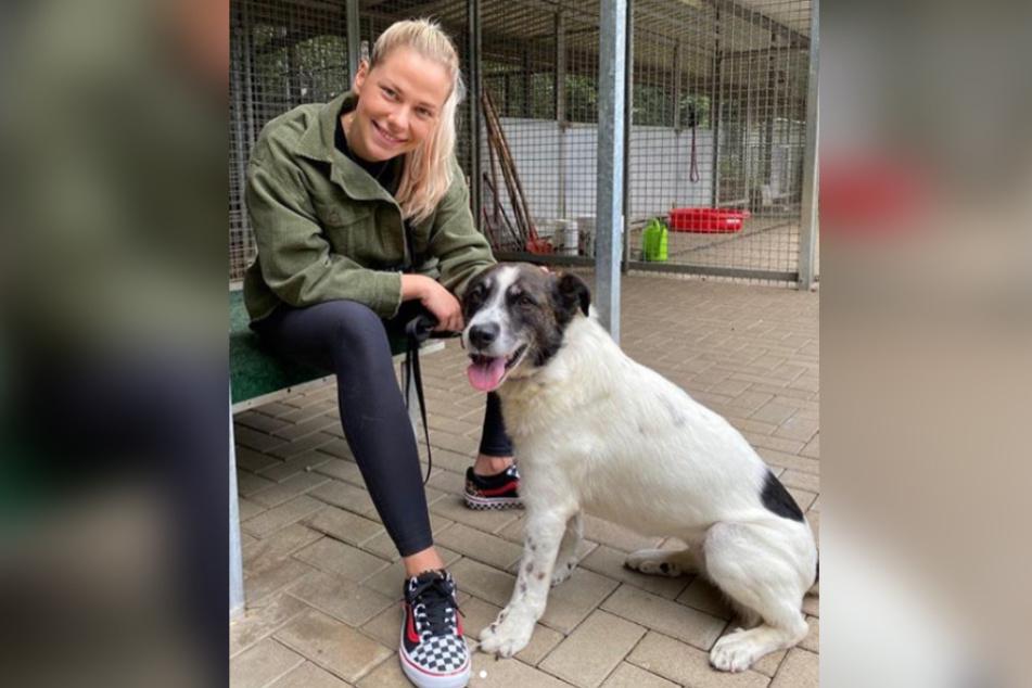 """Köln: AWZ-Star Cheyenne Pahde """"total verliebt"""" im Tierheim"""