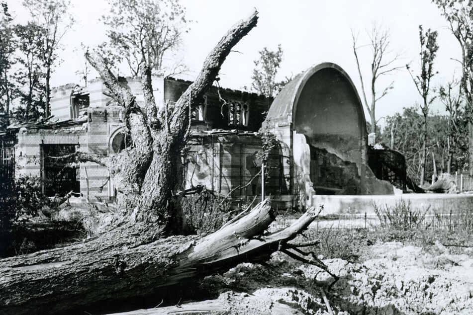 Nach 1945 lag der Zoo in Schutt und Asche.