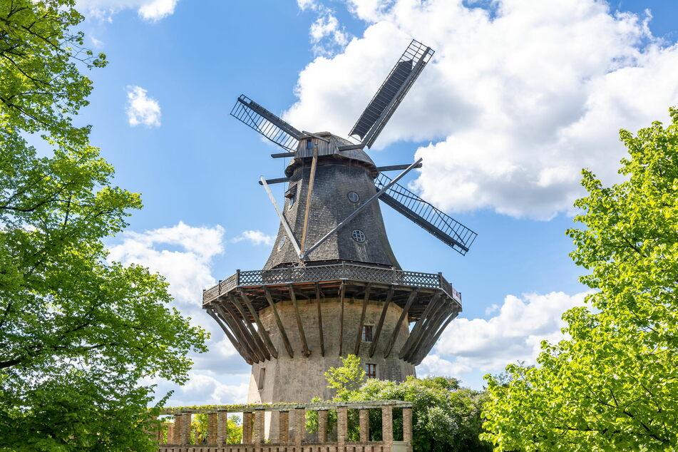 In Brandenburg zeugt diese Windmühle im Sanssouci-Park von der weitreichenden Geschichte der Region. (Foto: 123RF/Vladislav Zolotov)