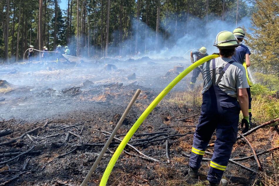 Brände wegen Trockenheit halten in ganz Hessen Feuerwehr in Atem