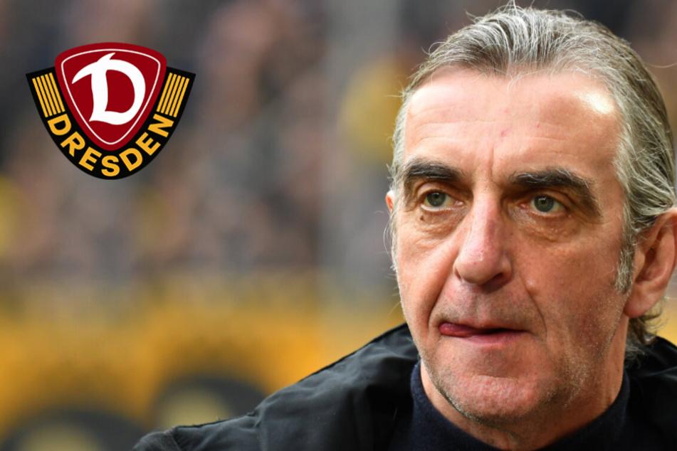 Sein Aus bei Dynamo ist fast ein Jahr her: Kehrt Ralf Minge in die 3. Liga zurück?