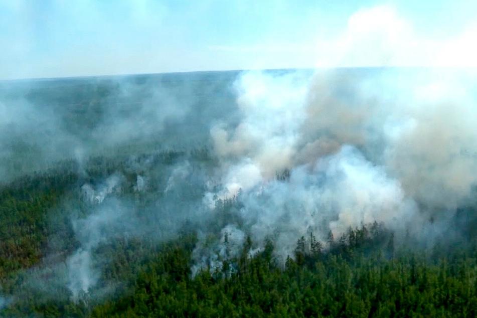 Rauchwolken steigen aus einem Wald auf. Klimaforscher haben sich besorgt gezeigt wegen der in in Sibirien und im äußersten Osten Russlands wütenden Waldbrände und Rekordtemperaturen.