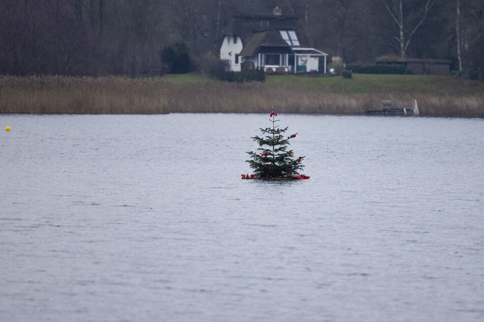 Ein Weihnachtsbaum schwimmt auf dem Bosseer Schoor.