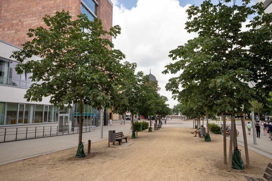 Auf dem Johannisplatz in Chemnitz kam es am Montagabend zu einer Rangelei (Archivbild).