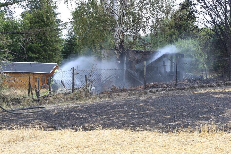 Etwa 50 Quadratmeter Feld brannten ab.