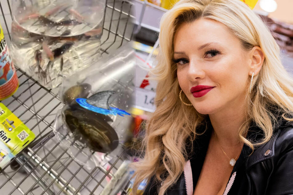 Evelyn Burdecki: Evelyn Burdecki geht shoppen: Tierisch, was ihr in die Tüte kommt!