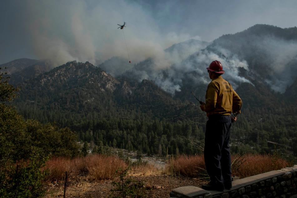 Feuerwehrhauptmann James Klosek von der Feuerwehr des Bezirks Santa Barbara County steht auf einer Mauer und beobachtet einen Hubschraubereinsatz zum Löschen eines Waldbrandes des sogenannten El Dorado Feuers.