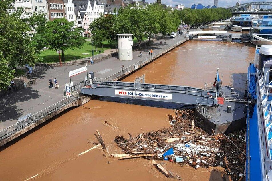 In Köln steigt der Rheinpegel immer weiter an. Aufgrund des Dauerregens sind viele Flüsse und Bäche in NRW über die Ufer getreten.