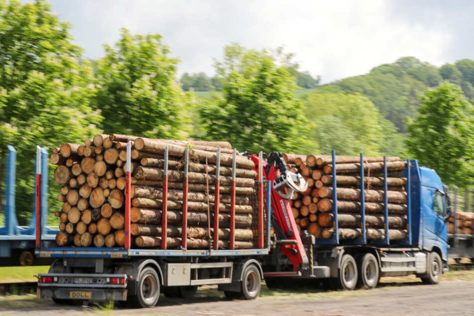 Ein Holztransporter fährt aus dem Wald. (Symbolbild)