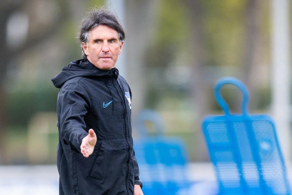 Bruno Labbadia ist der inzwischen vierte Hertha-Trainer in dieser Saison.