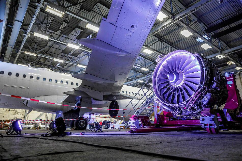 Flugzeug-Recycling: In der Lausitz wird dieser riesige Airbus zerlegt