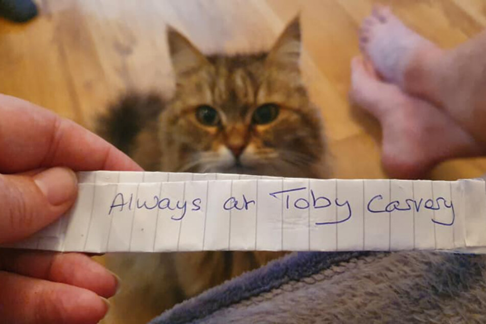 This note finally exposed Tula's secret.