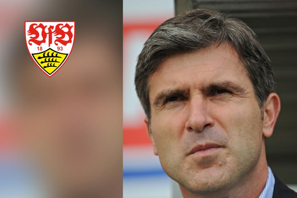 Ex-VfB-Profi Soldo: Karrieredauer wird sich verlängern