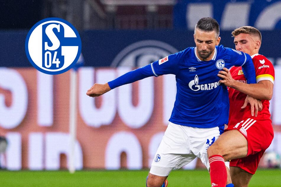 Schalke-Beben! Knappen lösen Vertrag mit Vedad Ibisevic schon wieder auf