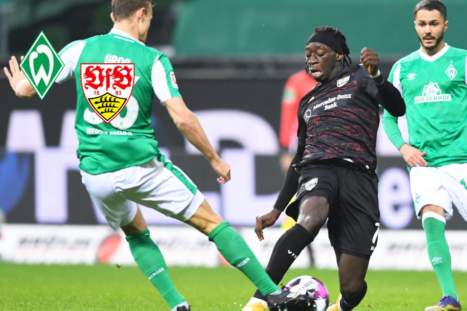 Knoten geplatzt! VfB schlägt Bremen dank Wamangituka-Doppelpack