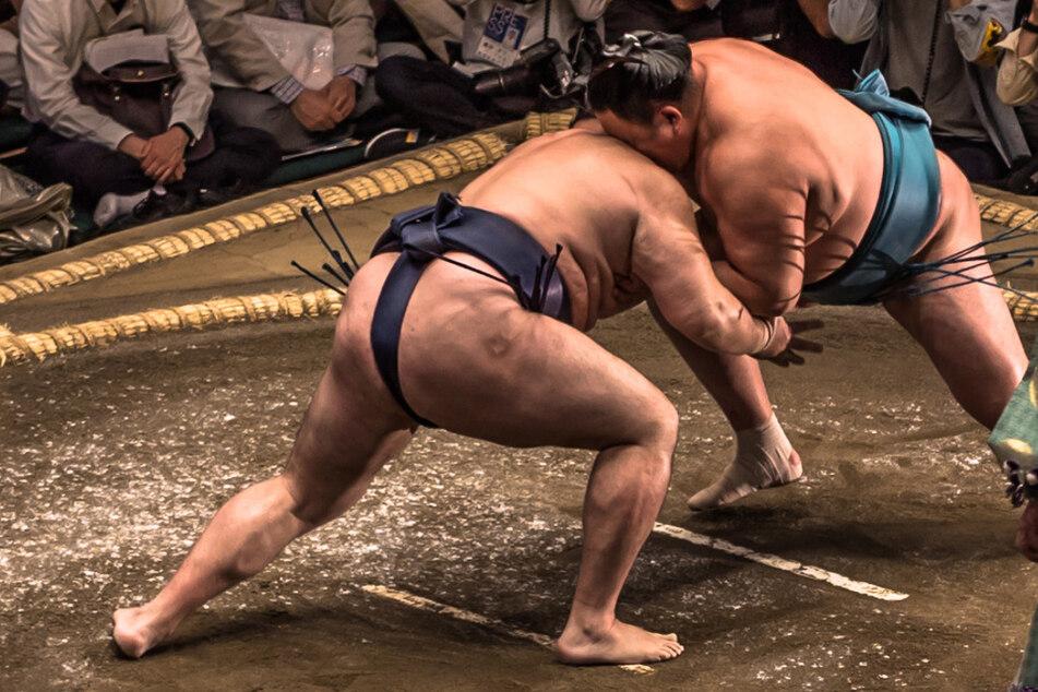 Spektakuläre Rettung! 20 Sumo-Ringer helfen ertrinkender Frau