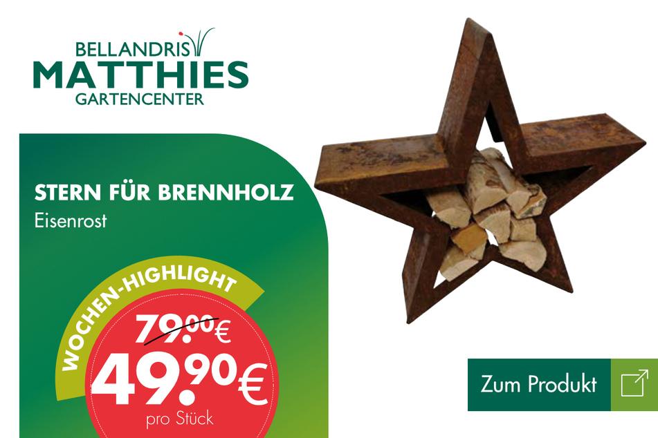 Stern für Brennholz für 49,90 Euro.