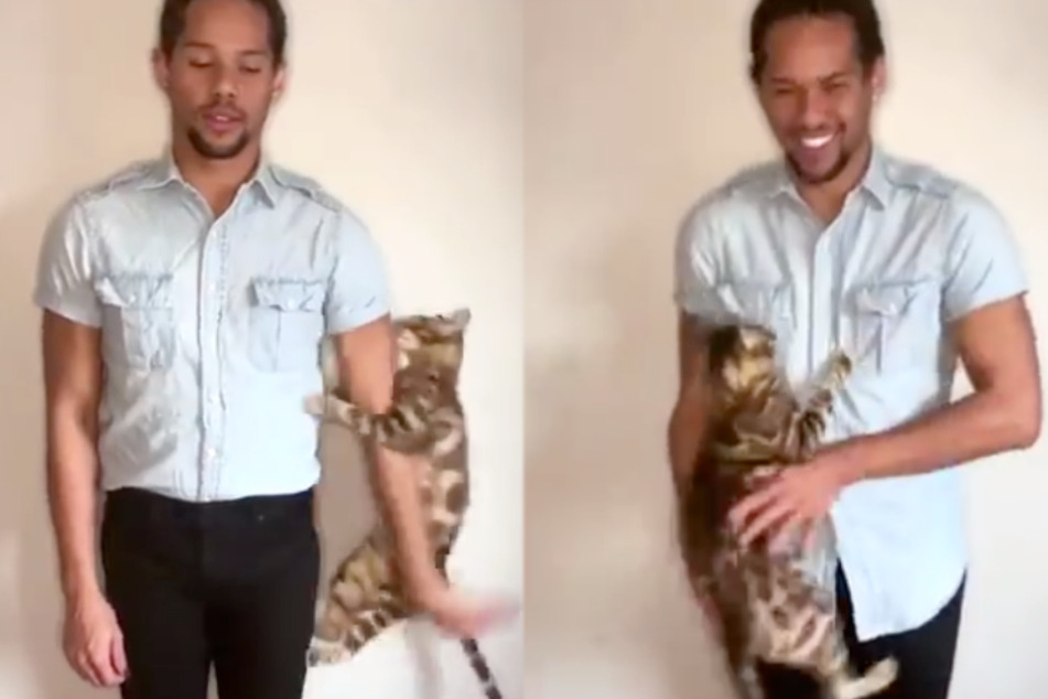 Aspiring actor tries to record audition tape, but his cat steals the show!