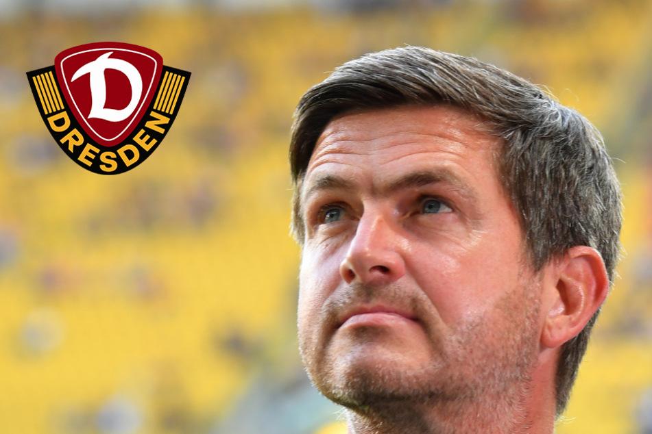 Nägel mit Köpfen! Dynamo-Youngster kriegen Profi-Verträge