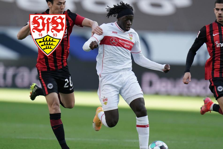 VfB Stuttgart hält schon wieder mit einem Spitzenteam mit!