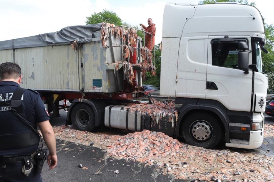 Igitt! Lkw verteilt tonnenweise Fisch-Abfälle auf der Autobahn