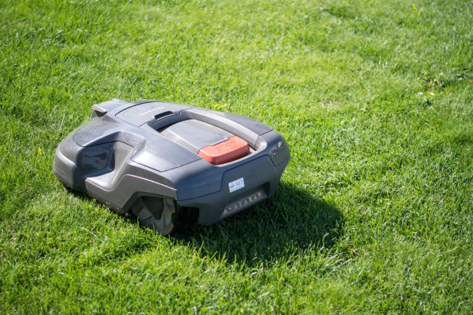 Selbst moderne Rasenroboter haben immer noch große Mängel, was die Sicherheit angeht