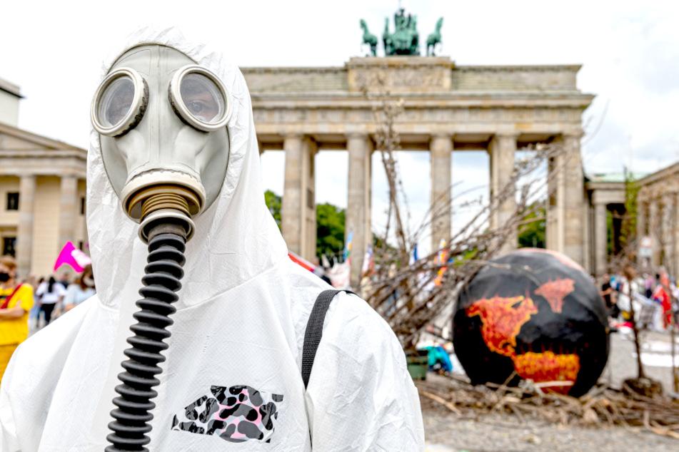 Wilde Tiere und ein Katapult: Was heute am Brandenburger Tor los war!