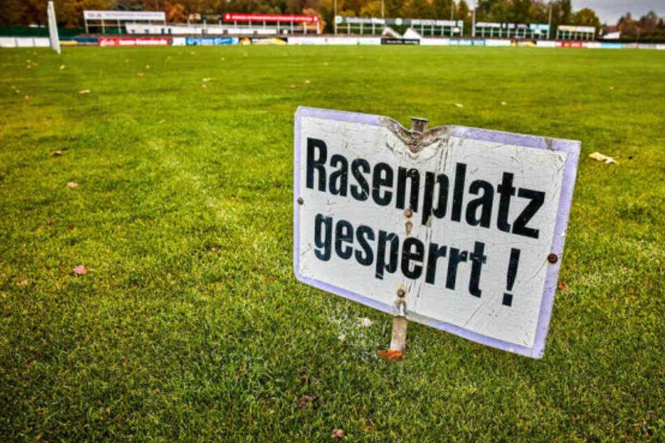 Dresden: Ebbe in der Rathauskasse: Pirnaer Vereine flehen um Hilfe