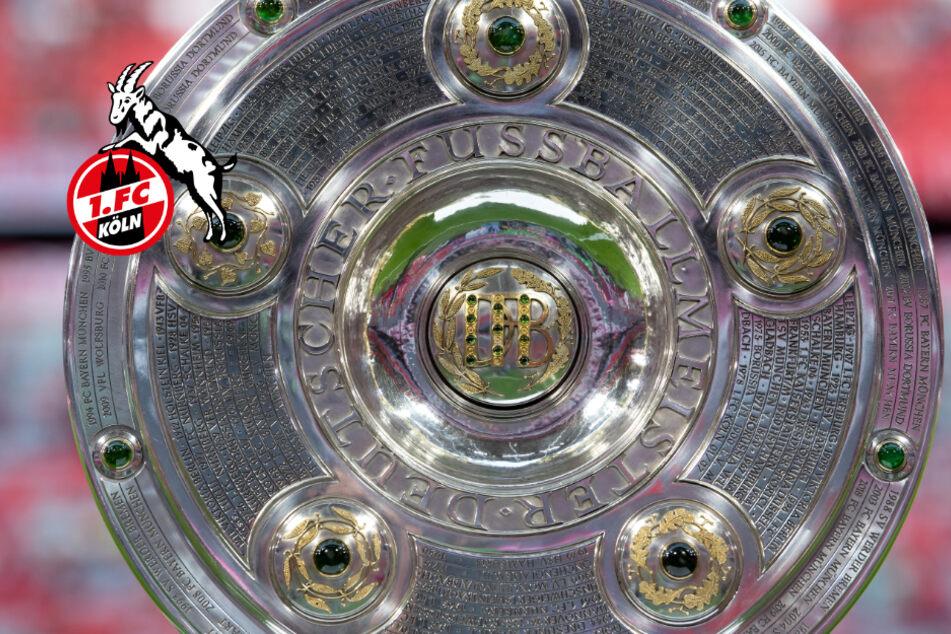 Langeweile auf den Punkt: So gratuliert der 1. FC Köln dem FC Bayern München zur Meisterschaft