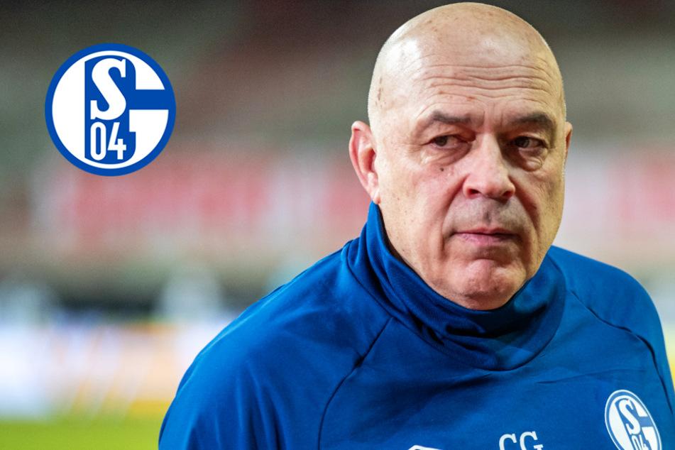 Revolte auf Schalke! Führungsspieler wollen Ablösung von Chefcoach Christian Gross