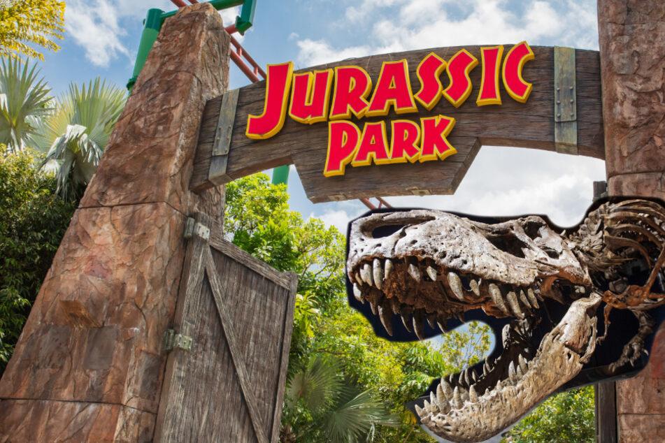 Forscher entdecken Dinosaurier-DNS: Kommt jetzt der echte Jurassic Park?