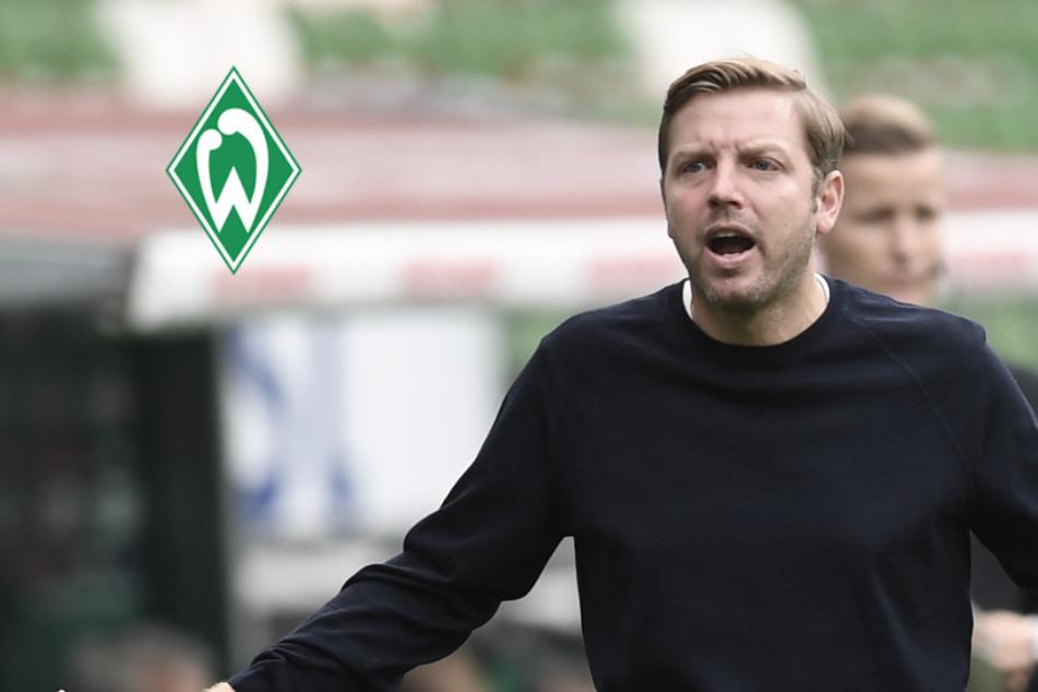 Corona-Schock bei Werder Bremen: Ganzes Team in Quarantäne!