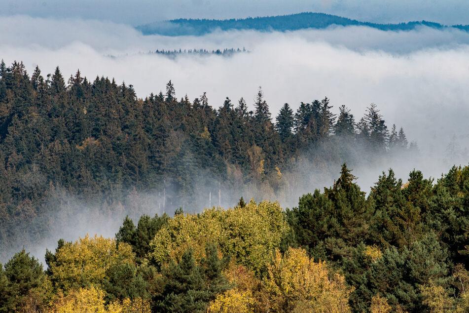 München: Zehn Punkte, keine Verbote: So will die Regierung das Klima retten