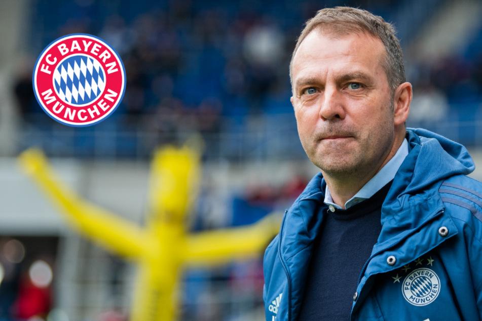 """Alles auf """"Hold"""" beim FC Bayern: Millionen-Risiko beeinträchtigt Kaderplanung"""