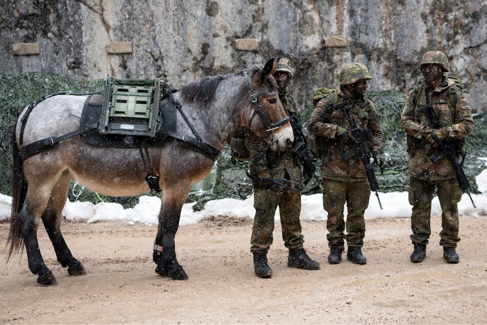 Soldaten vom Gebirgsjägerbataillon 23 laufen bei einer Übung mit einem Muli über den Übungsplatz.