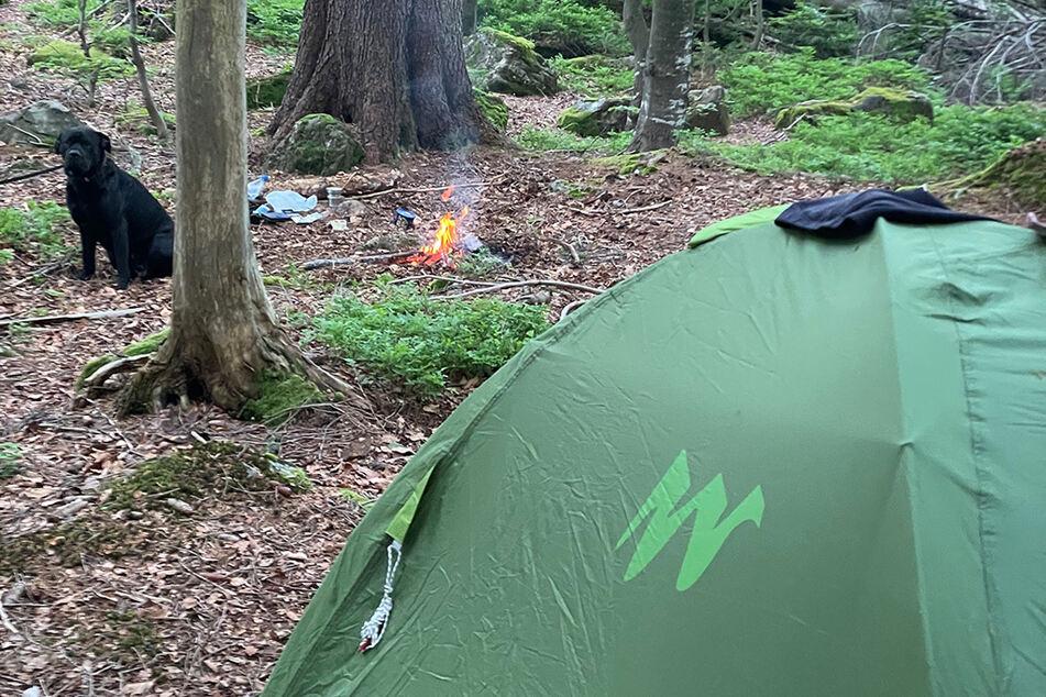 Wildcamper im Bayerischen Wald. Kaum ein Tag vergeht, an dem die Ranger niemanden erwischen.