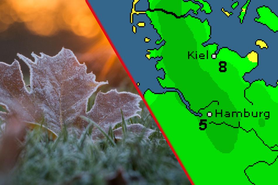 Plötzlich Frostgefahr? So wird das Wetter jetzt im Norden