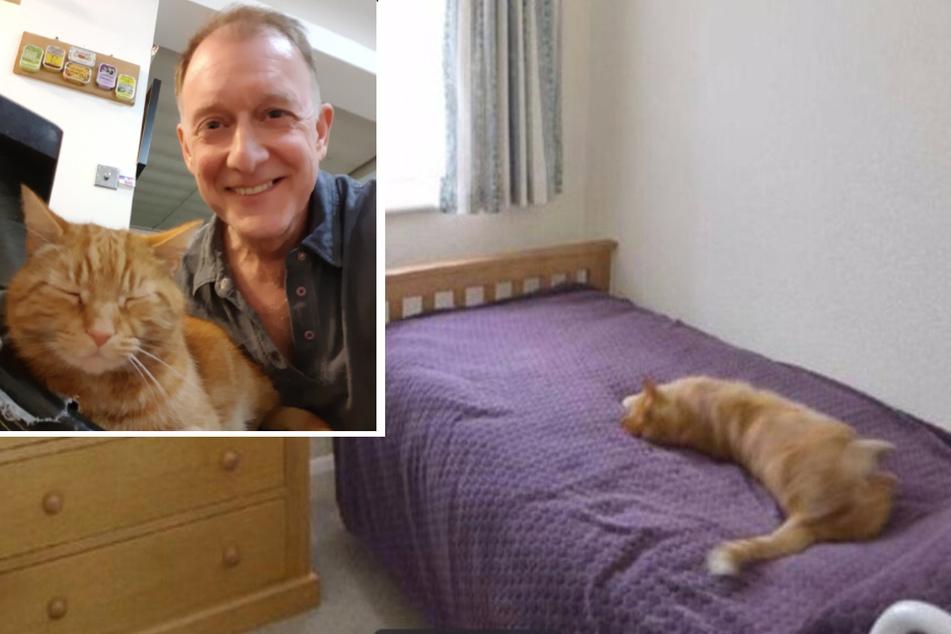 Curious neighbor checks out a house for sale and makes a familiar feline discovery