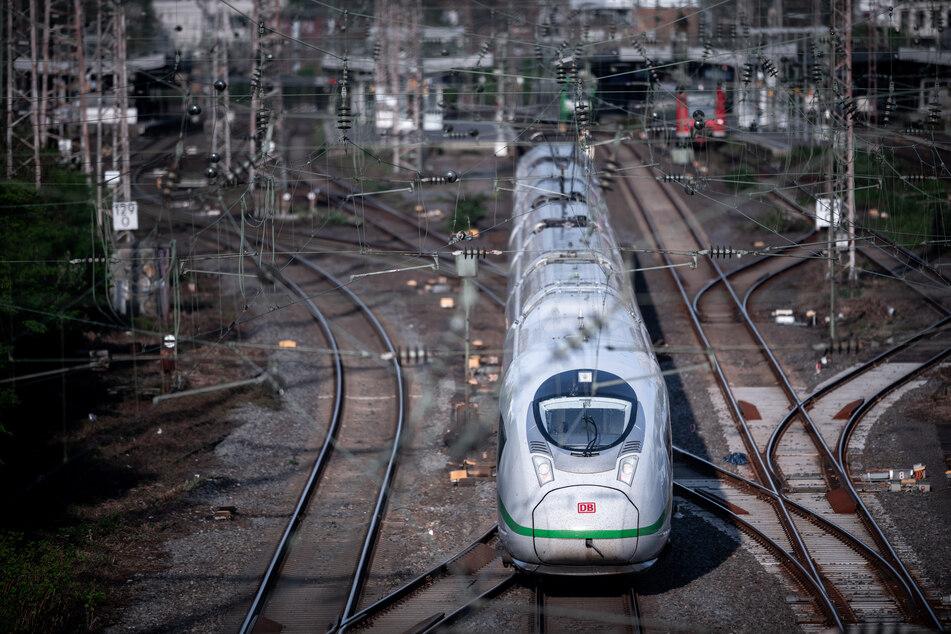 Unglücksvogel legt kompletten Essener Hauptbahnhof lahm
