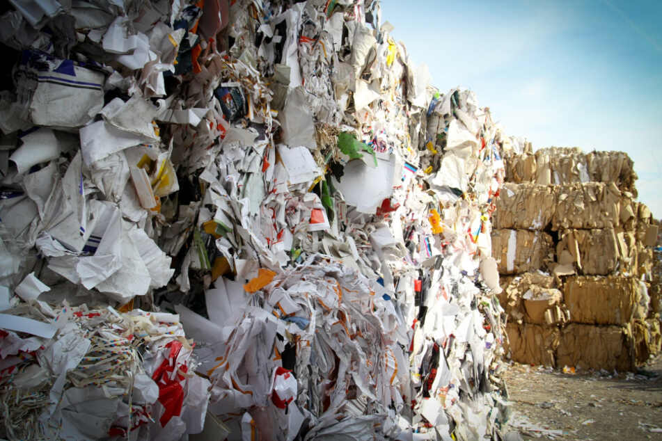 Stark verschmutzte Pizza-Kartons oder Kassen-Bons gehören nicht in den Papier-Müll.