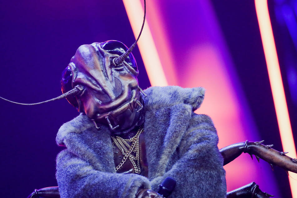 The Masked Singer: So geht's weiter!