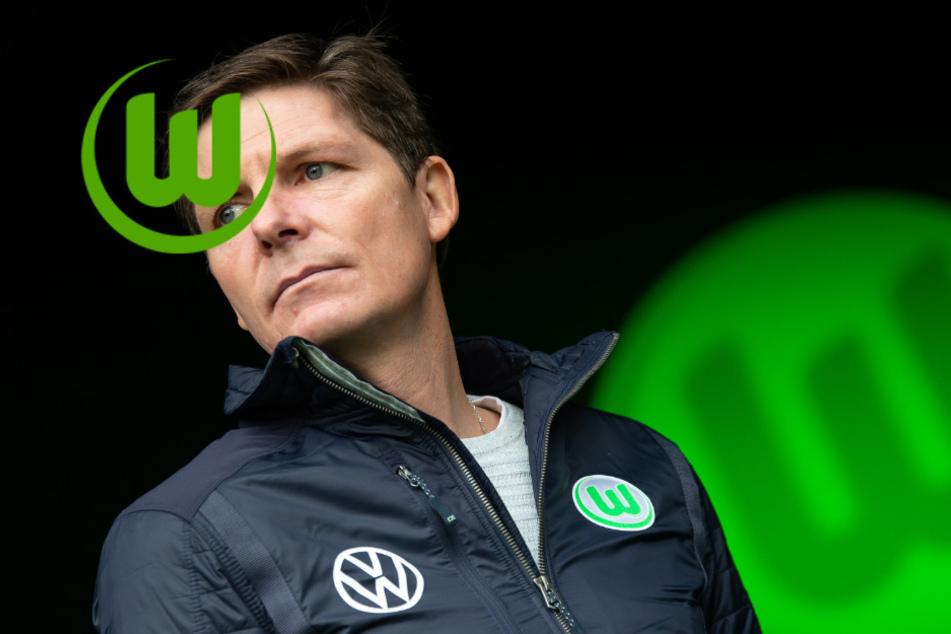 """VfL Wolfsburg wird Brustsponsor: Dieser Klub läuft bald mit dem """"Wölfe""""-Logo auf!"""