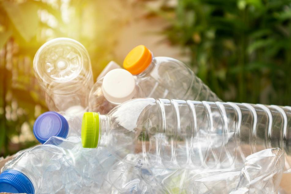 Die schnelle und geldsparende Lösung, um Pflanzen im Urlaub zu gießen: leere PET-Flaschen.