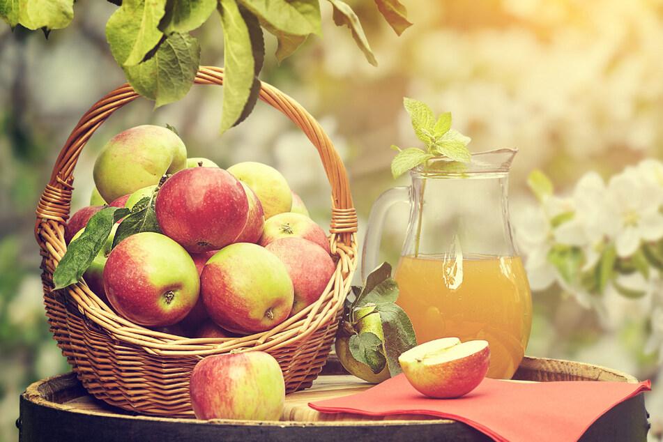 Äpfel sind kalorienarm, voller Vitamine und Mineralstoffe und einfach lecker.