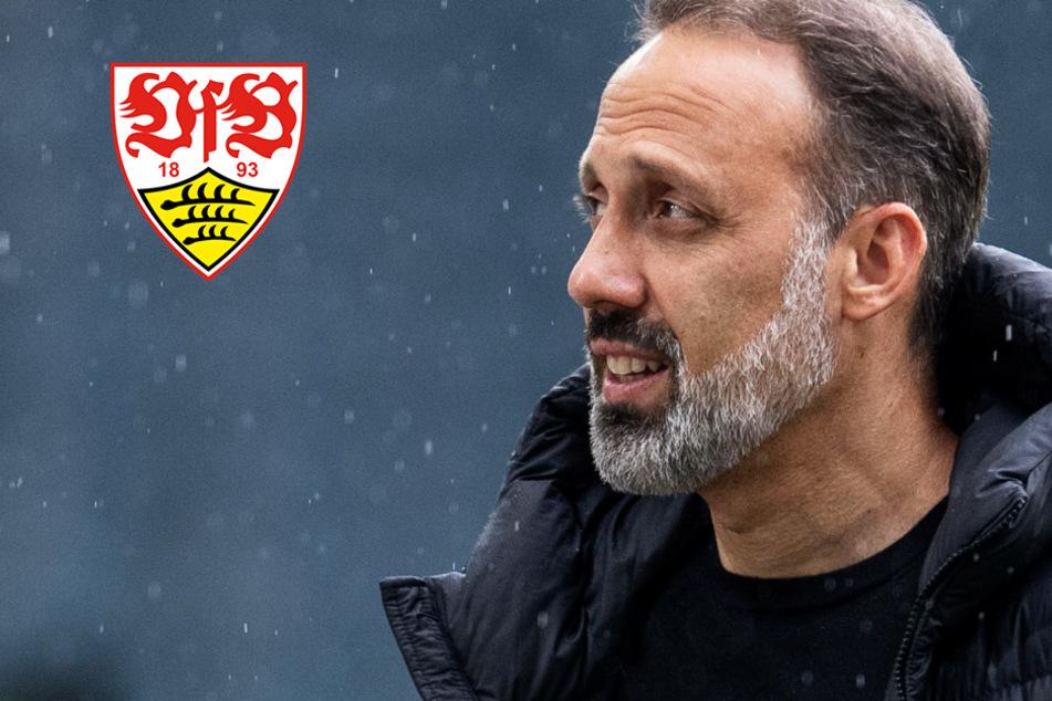 Stuttgart international? VfB-Coach Matarazzo spricht das böse Wort immer noch nicht aus!