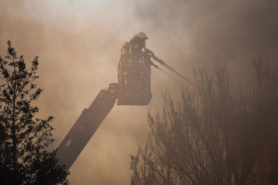 Zehntausende Quadratmeter Moor brennen: 130 Einsatzkräfte vor Ort