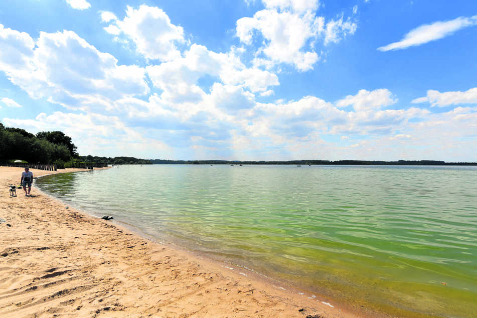 Niedrigwasser und die anhaltend heißen Temperaturen begünstigen das Blaualgen-Wachstum in der Talsperre Bautzen. Das Gesundheitsamt empfiehlt, dort besser nicht zu baden.