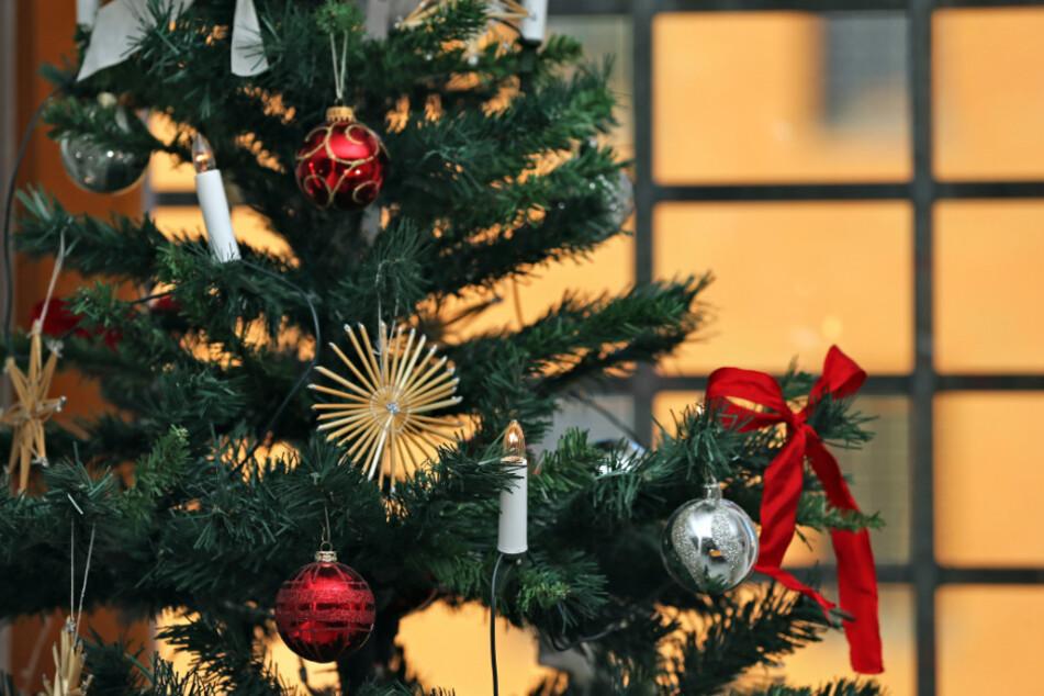 Ein geschmückter Weihnachtsbaum steht vor einem vergitterten Fenster einer Jugendstrafvollzugsanstalt. (Symbolbild)