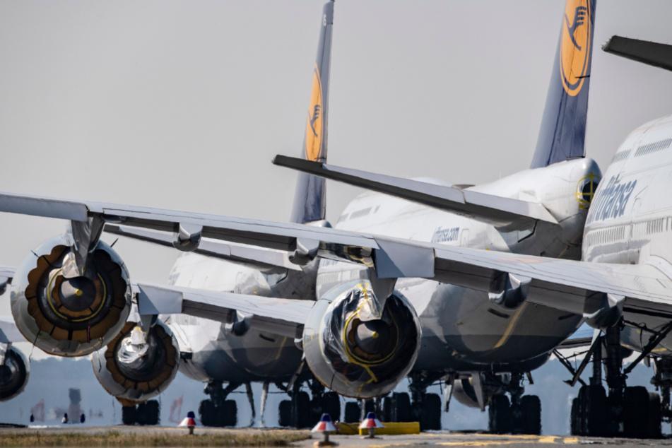 Unzählige stillgelegte Flugzeuge der Lufthansa stehen auf der Rollbahn des Flughafens Frankfurt.